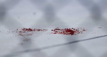 BloodLinFighting-750x400