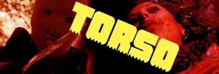 torso11