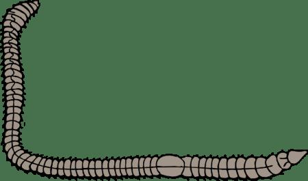 free-vector-earth-worm-clip-art_104316_Earth_Worm_clip_art_hight