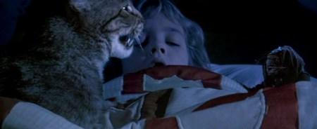 cats-eye5