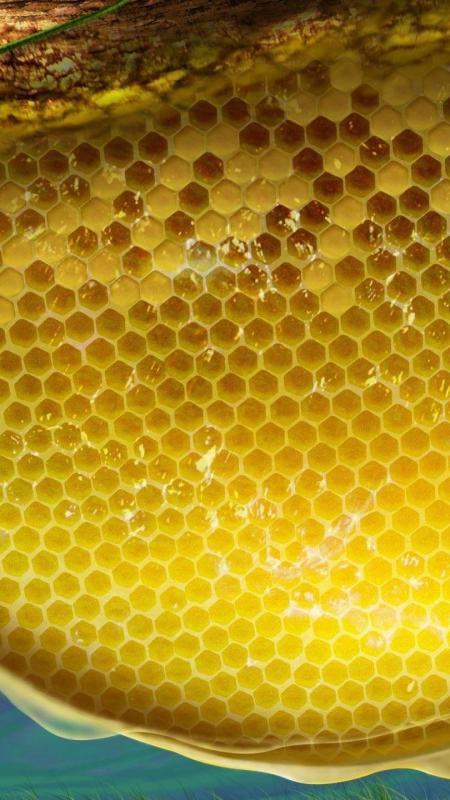 1440x2560-digital_bee_honey_bees_making_honey_art-17922