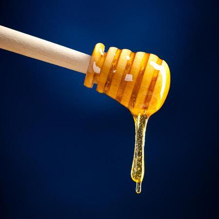honey-bianca-nerlich