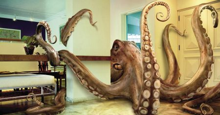 wallpaper-funny-octopus-in-living-room