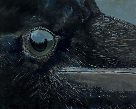 ravens-eye-les-herman