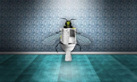fly-on-toilet-seat-reading-newspaper-funny-picture