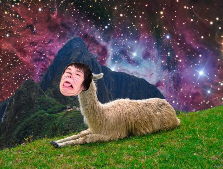 llama_danisnotonfire_by_mercurypowder-d614czh