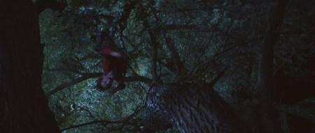 poltergeist-2015-movie-screenshot-tree-rape