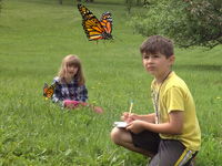 Can one imagine children never having the opportunity to enjoy the sight of a monarch butterfly?