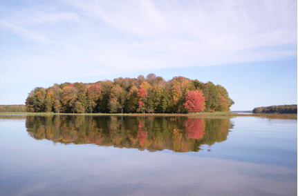 An island off the county park on the Big Eau Pleine Flowage in autumn.