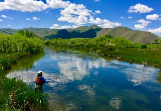 woman fly fishing in Silver Creek