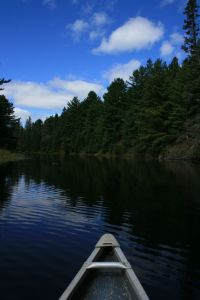 A beautiful paddle in Algonquin Park