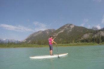 Stand up paddling the Bow River from the Hwy 1A turnoff back into town