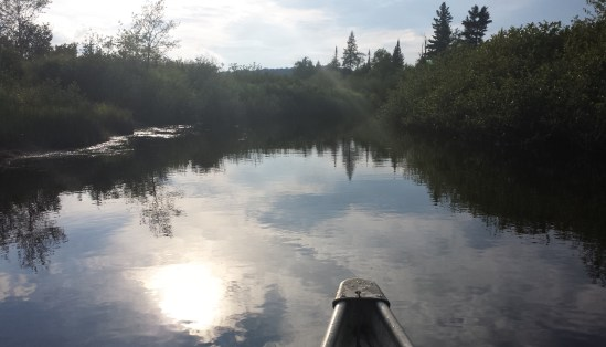 Oswegatchie river with tip of canoe in frame