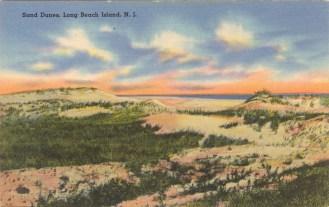 Sand Dunes, Long Beach Island, NJ