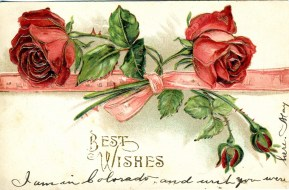 """Best Wishes 1909 postmark """" I am in Colorado and wish you were here."""""""