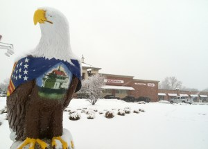 Riverton eagle surveys Broad Street