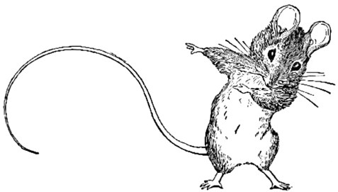mouse - Mary Frances Cook Book