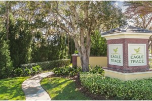 Eagle Trace Brandon Florida New Villas Homes Community