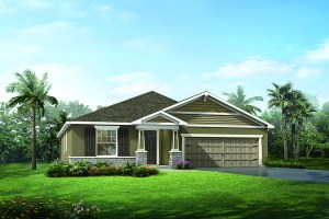 Free Service for Home Buyers   Boyette Park Riverview Florida Real Estate   Riverview Realtor   New Homes for Sale