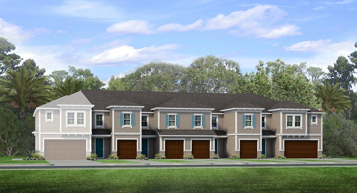 Bridgehaven New Town Homes Community Tampa Florida