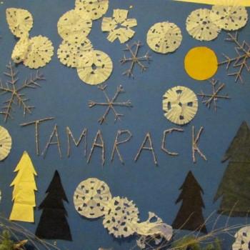 Tamarack School