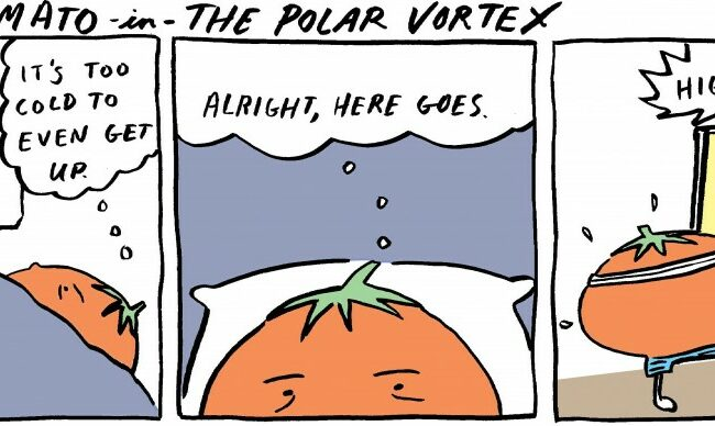 Laura Maker Polar Vortex