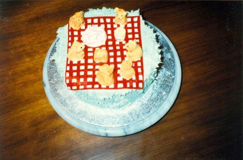 Bronwen 1st birthday cake 15.08-1