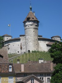 Circular fortification overlooking the Rhine