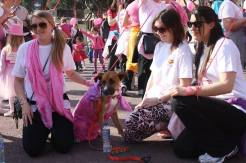 pink-ribbon-walk-2014-014