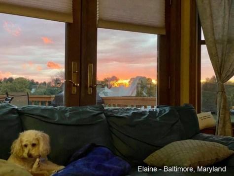 Elaine - Baltimore MD