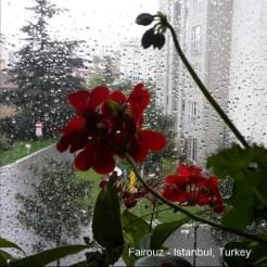 Fairouz - Istanbul Turkey