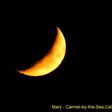 Mary - Carmel-by-the-Sea CA