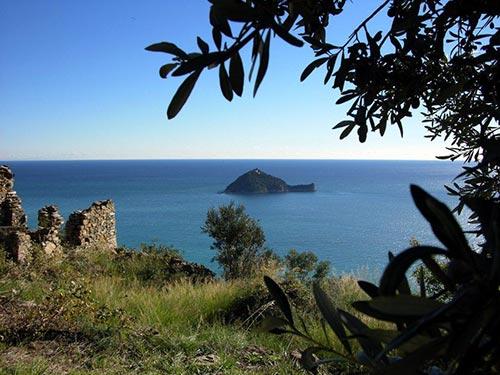 Isola di Gallinara vista dal punto panoramico