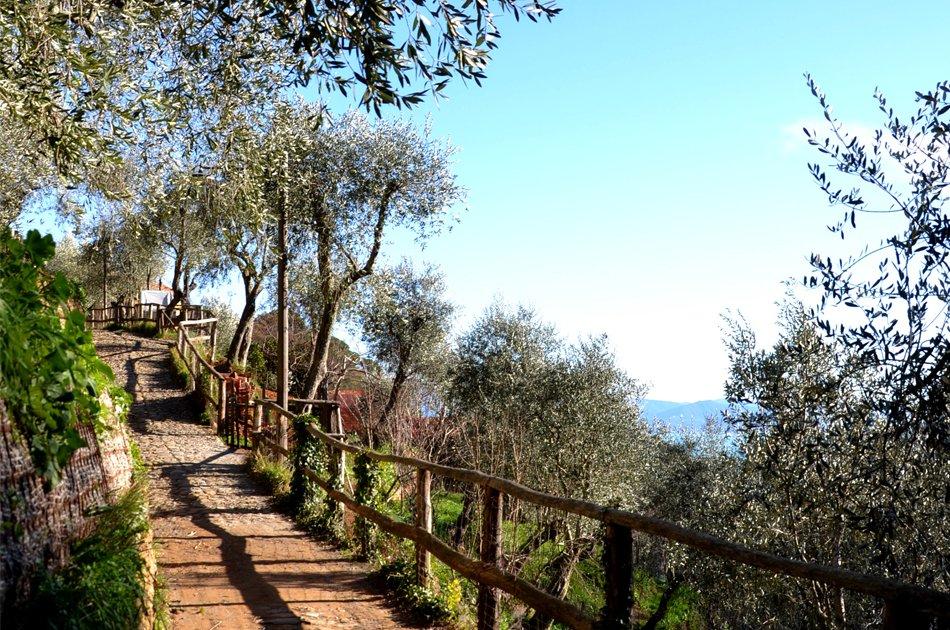 Portofino sentiero nel parco
