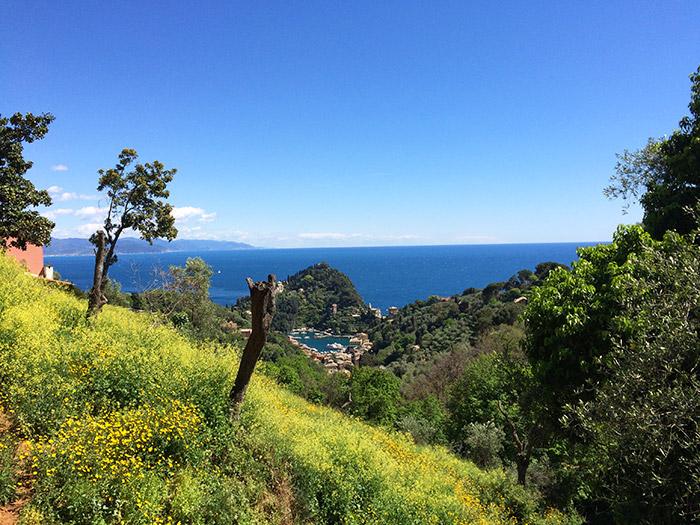 Gita sulle alture di Portofino con vista sul porticciolo