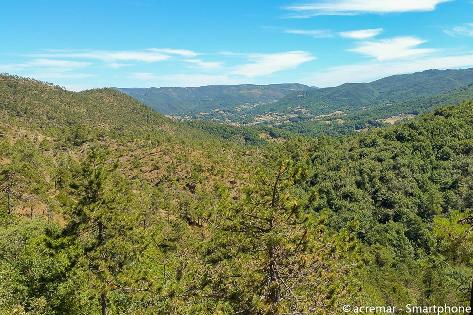Sassello Foresta della Deiva vista dall'alto