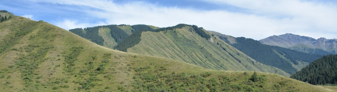 rivier boom berg & meer - berg lang