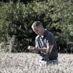 Mr Pobel in his wheat fields