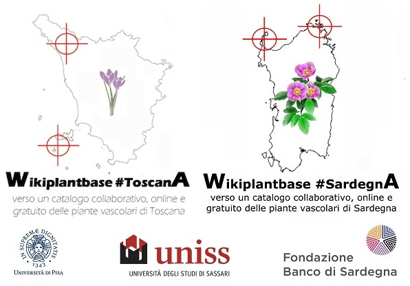 Wikiplantbase