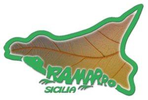 Ramarro Sicilia