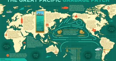 Lotta alle plastiche (specie nel mare) in Italia e nel mondo