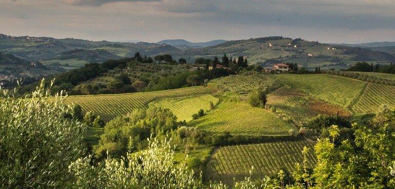 Il paesaggio italiano sprofonda in un hashtag  La Rivista della Natura