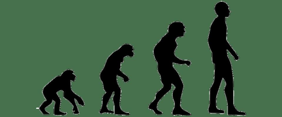Evoluzione delle migrazioni: come l'Homo sapiens andò in