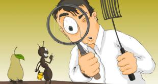 dsfdsfsdsa - مكافحة حشرات بالرياض 0594261363