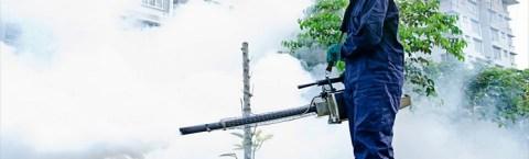 مكافحة الحشرات و النمل الابيض ورش المبيدات بضمان 3 شهور و عقود شهرية وسنوية