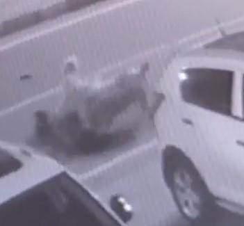 Rize'de sokak köpekleri saldırdıkları kadını yerlerde sürükledi
