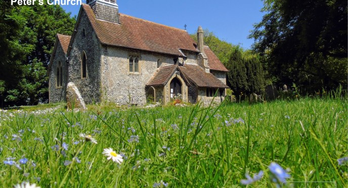 Church and Daisey flower