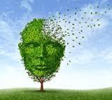 صورة الزهايمر , أسباب الزهايمر , أعراض الزهايمر , علاج الزهايمر