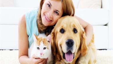 صورة 11 فائدة لتربية الحيوانات الاليفة أبرزها الوقاية من الربو وتقوية المناعة