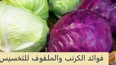 Photo of فوائد الكرنب للتنحيف , فوائد ماء الملفوف لإنقاص الوزن
